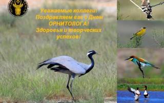 Поздравление с Днём орнитолога